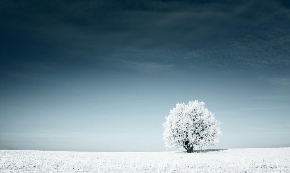 natural remedies for seasonal depression